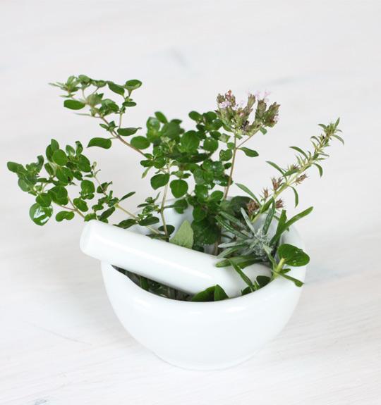Organic  Single herbs