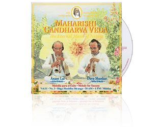 Anant Lal / Daya Shankar (Shehnai) Success (10-13 hrs), CD