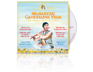 Amar Nath (Bamboo Flute) Success in Life (13-16h), CD
