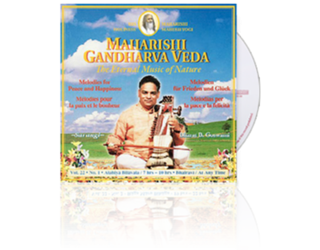 Bharat Bhushan Goswami (Sarangi) Peace & Happiness (7-10 hrs), CD